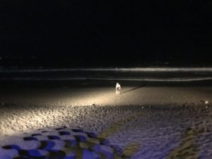 woobar_beach